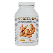 Ginger-450 - 360 capsules