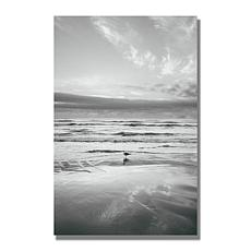 Ariane Moshayedi 'Seagull Reflections' Canvas Art