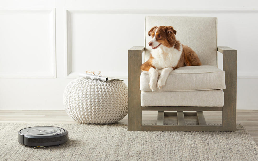 iRobot on a rug next to a couch with a dog on it