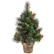 2 ft. Crestwood Spruce Tree with Battery Operated Multicolor LED Li...