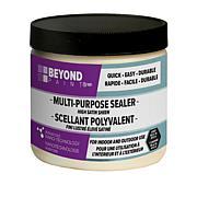 BEYOND PAINT® Multipurpose Indoor and Outdoor Sealer