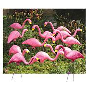 Bloem 12-Pack Pink Flamingo Lawn Statues