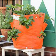 BloemBagz 9.5-Gallon Strawberry Planter Bag