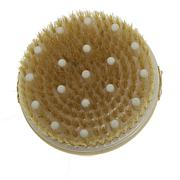 Daily Concepts Your Exfoliating Brush