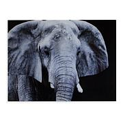 "Southern Enterprises ""The Elephant"" Glass Wall Art"
