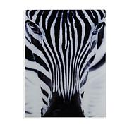 "Southern Enterprises ""The Zebra"" Glass Wall Art"