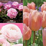 VanZyverden Color Your Garden Pink Collection 40-piece Bulb Set