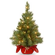 Winter Lane 2' Majestic Fir Tree w/Lights - Red