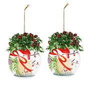 "Winter Lane 2-pack 6"" Lighted Glass Ornaments with Gift Bags"