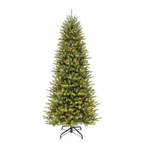 10' Slim Franklin Fir Artificial Christmas Tree - 900 Clear Lights