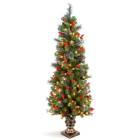 5 ft. Crestwood Spruce Entrance Tree with Clear Lights