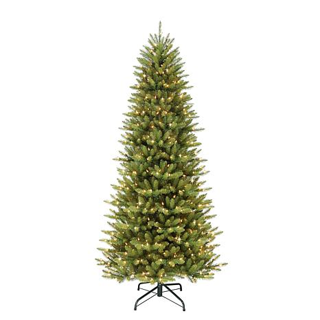 6-1/2' Slim Franklin Fir Artificial Christmas Tree - 350 Clear Lights