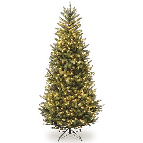 75 ft natural fraser slim fir tree with clear lights - 75 Ft Slim Christmas Tree