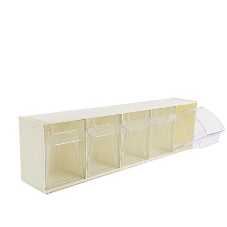 Anna Griffin® Deflecto 5 Bin Wall Mount Storage Rack