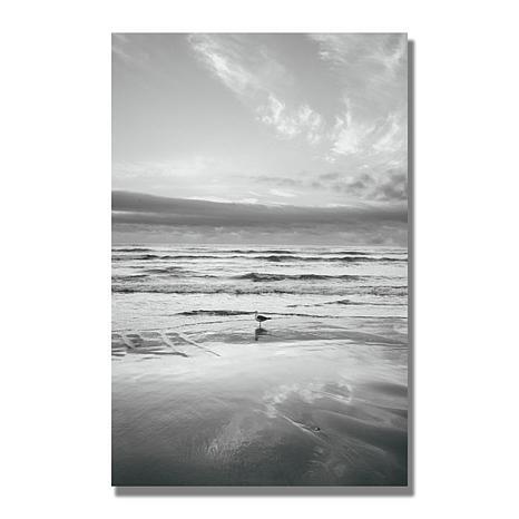 Ariane Moshayedi 'Seagull Reflections' Canvas Art