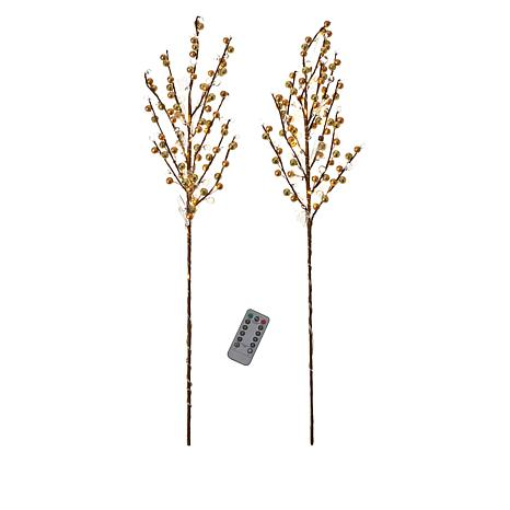 august & leo Set of 2 LED Twigs with Remote