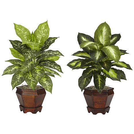 Dieffenbachia with Wood Vase Silk Plant Set of 2