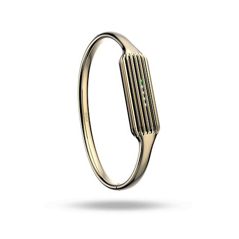 Fitbit Flex 2 Bangle - 22K Gold-Plated Stainless Steel