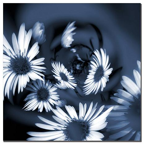 Giclee Print - Dancing Flowers