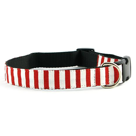 Isabella Cane Candy Cane Stripe Dog Collar - Small