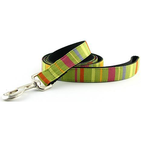 Isabella Cane Dog Leash - Lime 5ft N