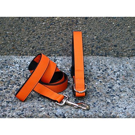 Isabella Cane Medium Orange Tango Collar-Leash Set
