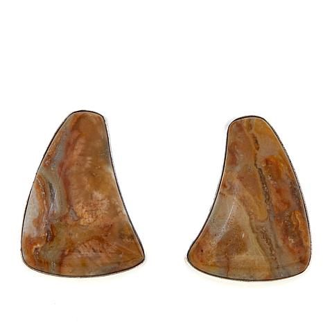 Jay King Freeform Java Lace Agate Earrings