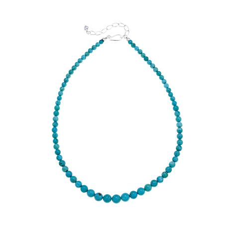 """Jay King Mongolian Mist Turquoise Bead 18"""" Necklace"""