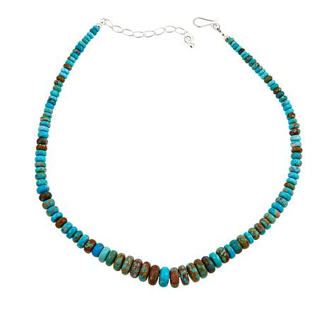 """Jay King Sonoran Blue Turquoise 18"""" Sterling Silver Necklace"""