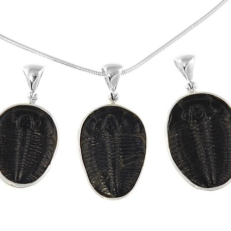 Jay king trilobite fossil sterling silver pendant with 20 chain jay king trilobite fossil sterling silver pendant with 20 chain necklace 8468653 hsn mozeypictures Image collections