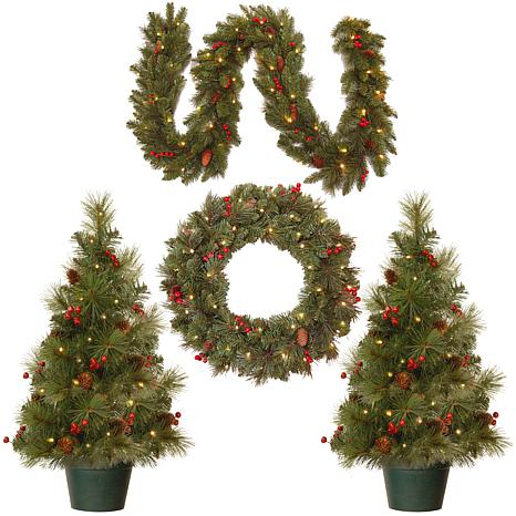 National Tree Entrance Assortment with Cones and Berries 4-pack