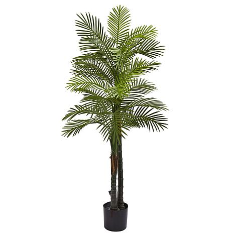 Nearly Natural 5.5 ft. UV Resistant Double Robellini Palm Tree