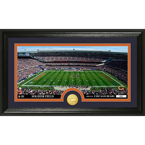 NFL Stadium Bronze Coin Panoramic Photo Mint - Bears
