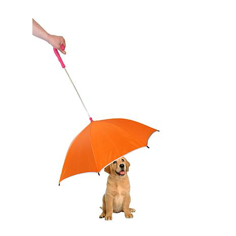 Pet Life Umbrella With Reflective Lining And Leash Holder