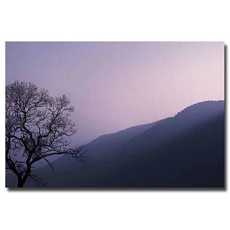 "Philippe Sainte-Laudy Medium-Sized ""Purple Hours"" Print"