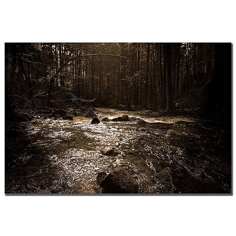 "Philippe Sainte-Laudy ""The River"" Print"