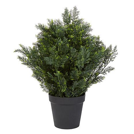 """Pure Garden 26"""" Cedar Topiary"""