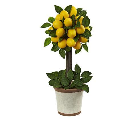 "South Street Loft 18"" Lemon Tree in a Decorative Pot"