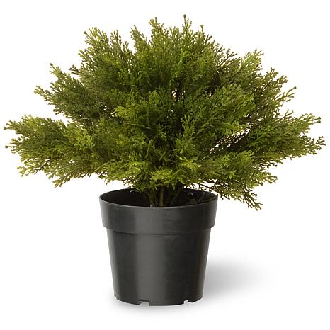 "Winter Lane 15"" Artificial Topiary Globe Juniper"