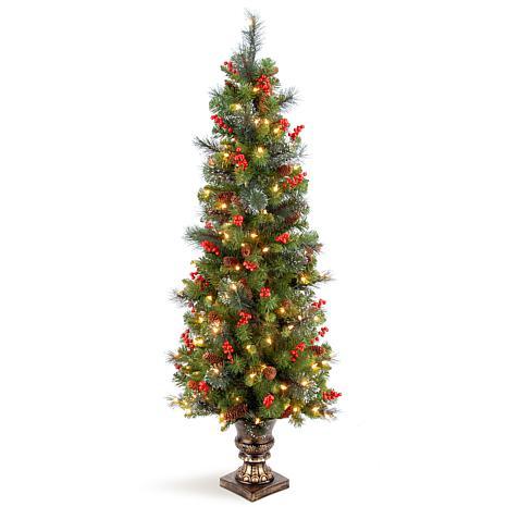 Winter Lane 5'  Crestwood Spruce Entrance Tree w/Lights