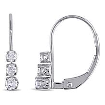 14K White Gold Diamond-Accented Leverback Earrings