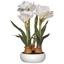 "20"" Artificial White Amaryllis Flowers"