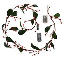 """""""As Is"""" august & leo 6' Beaded LED Garland with Remote"""