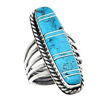 Chaco Canyon Zuni Sterling Silver Kingman Turquoise Elongated Ring
