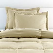 Concierge Collection Platinum 100% Cotton Shams 2-pack