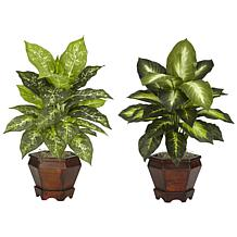 Dieffenbachia with Wood Vase Silk Plant Set of 2