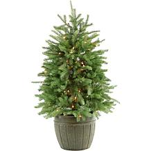 Fraser Hill Farms 4' Potted Pine Tree with Clear Lights