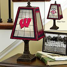 Handpainted Art Glass Team Lamp
