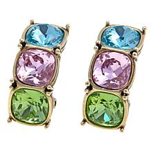 "Heidi Daus ""Tried and True"" Crystal Hoop Earrings"