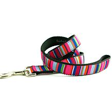 Isabella Cane ZZ-Stripe-Dog Leash